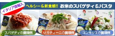 お米でつくった麺類